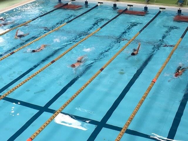プールの水に含まれる消毒液が鼻の粘膜を刺激し、アレルギー性鼻炎の症状を悪化させることがあります